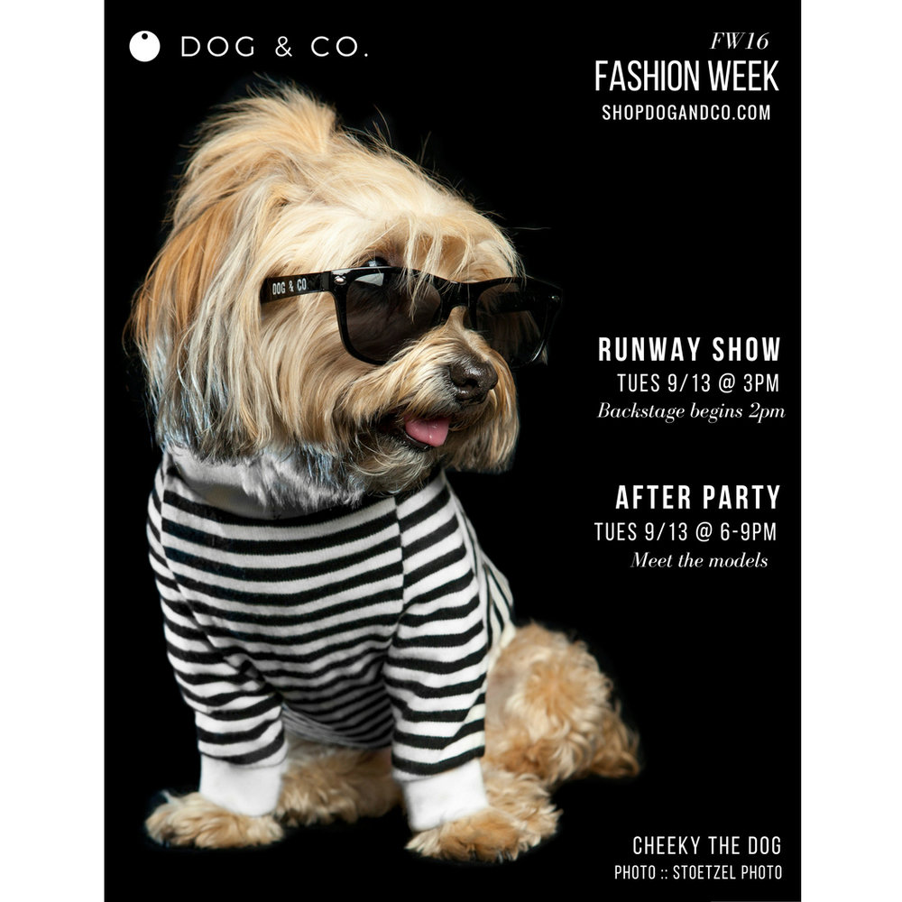 NYFW | Fashion Week | Runway Show + AfterParty