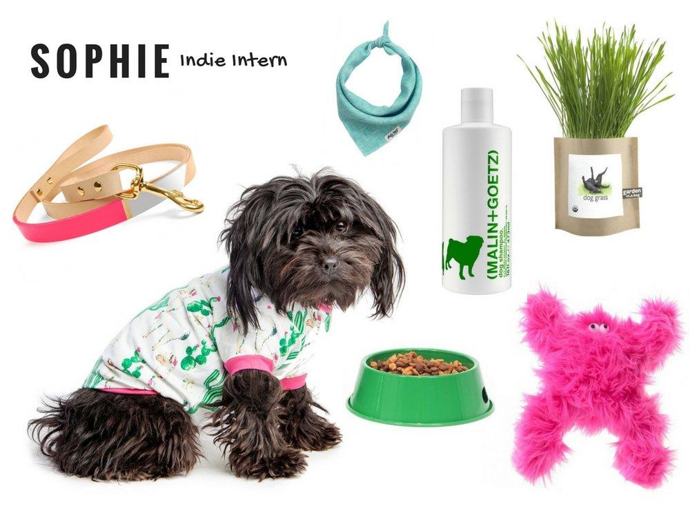 SOPHIE | Indie Intern.jpg