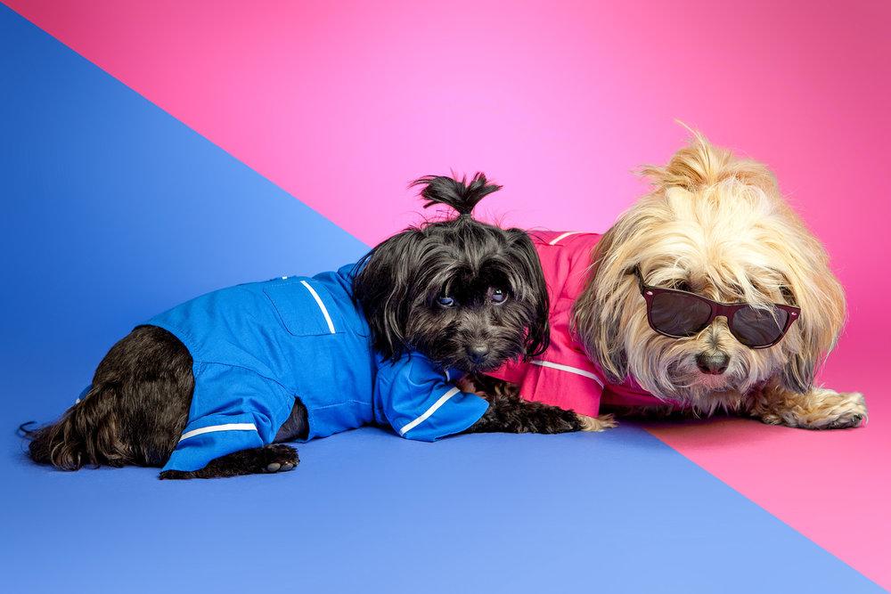 FAB DOG | Poplin PJs
