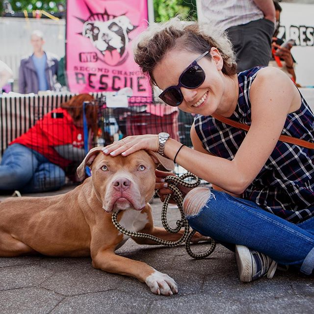 """Nicole + Max """"Max is 2 years old, has very handsome eyes, and is great with other dogs. He's available for adoption from @secondchancerescueofnyc """" #humanandhound"""