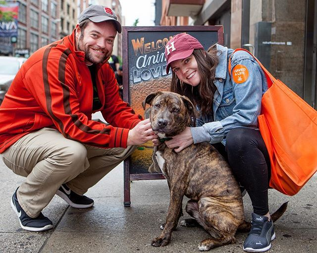 """Tim & Blake + Mary (TBD) """"She's such a beautiful little girl! She ran over to us, put out her little paws and looked right up at us with her sweet eyes. We knew that we had to adopt her!"""" #humanandhound"""