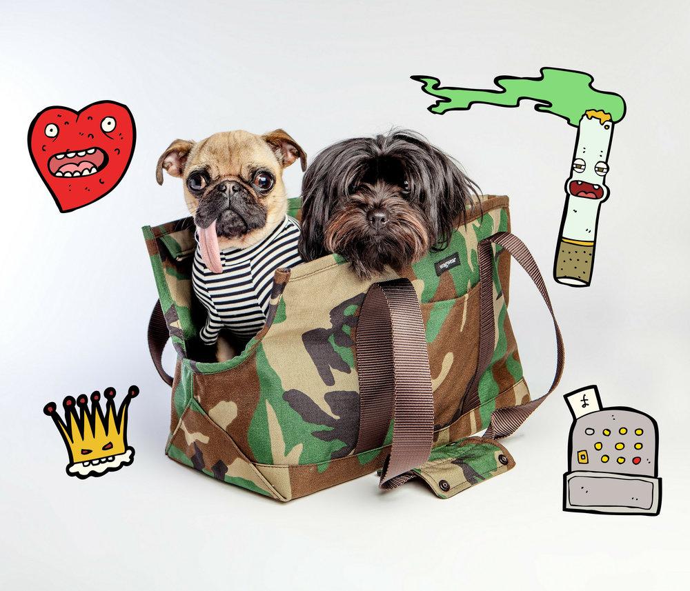 WAGWEAR | Cordura Carrier + DOG & CO. | Perfect T