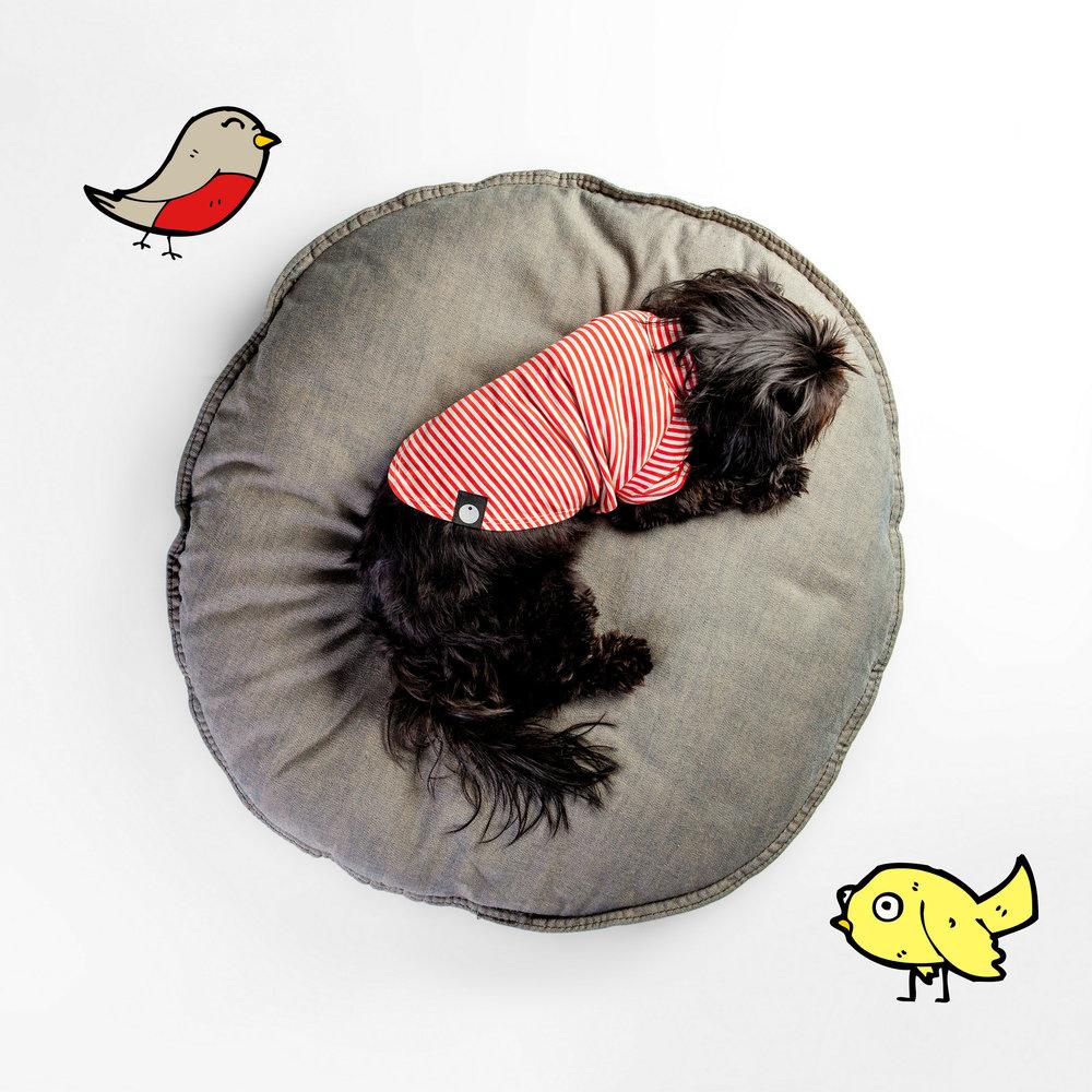 DEN DOG BEDS | Dog Bed in Sand Denim + DOG & CO. | Perfect T