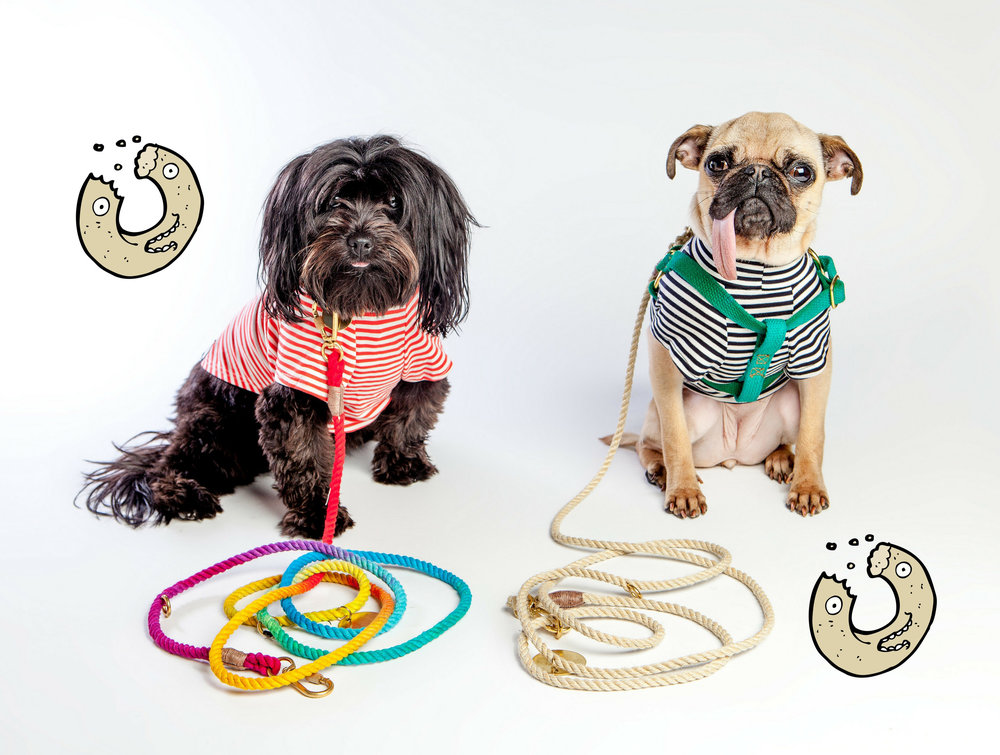 FOUND MY ANIMAL | Adjustable Cotton Lead in Rainbow + Jute + DOG & CO. | Perfect T