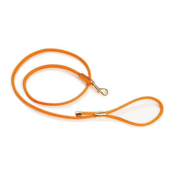 LA CINOPELCA | Orange Leash.jpg