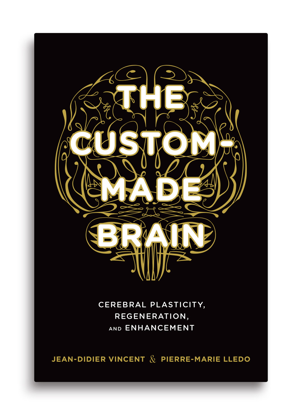 CustomMadeBrain_cover.jpg