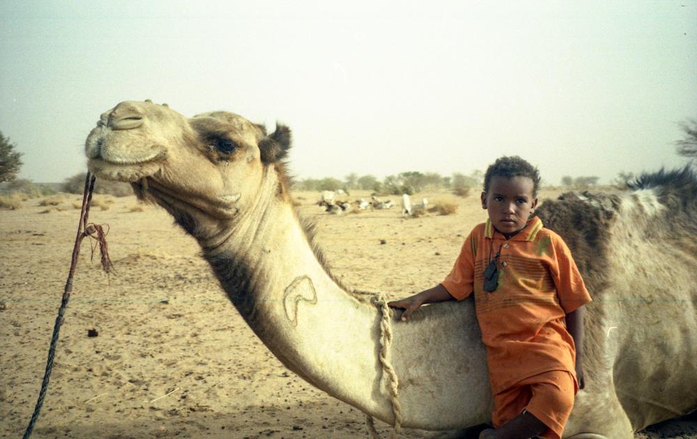 west africa086-untitled.jpg