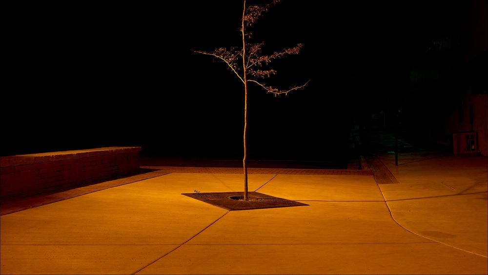 Jim Vecchi - Crystal Silence - 46.jpg