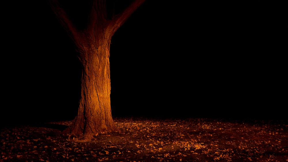 Jim Vecchi - Crystal Silence - 47.jpg