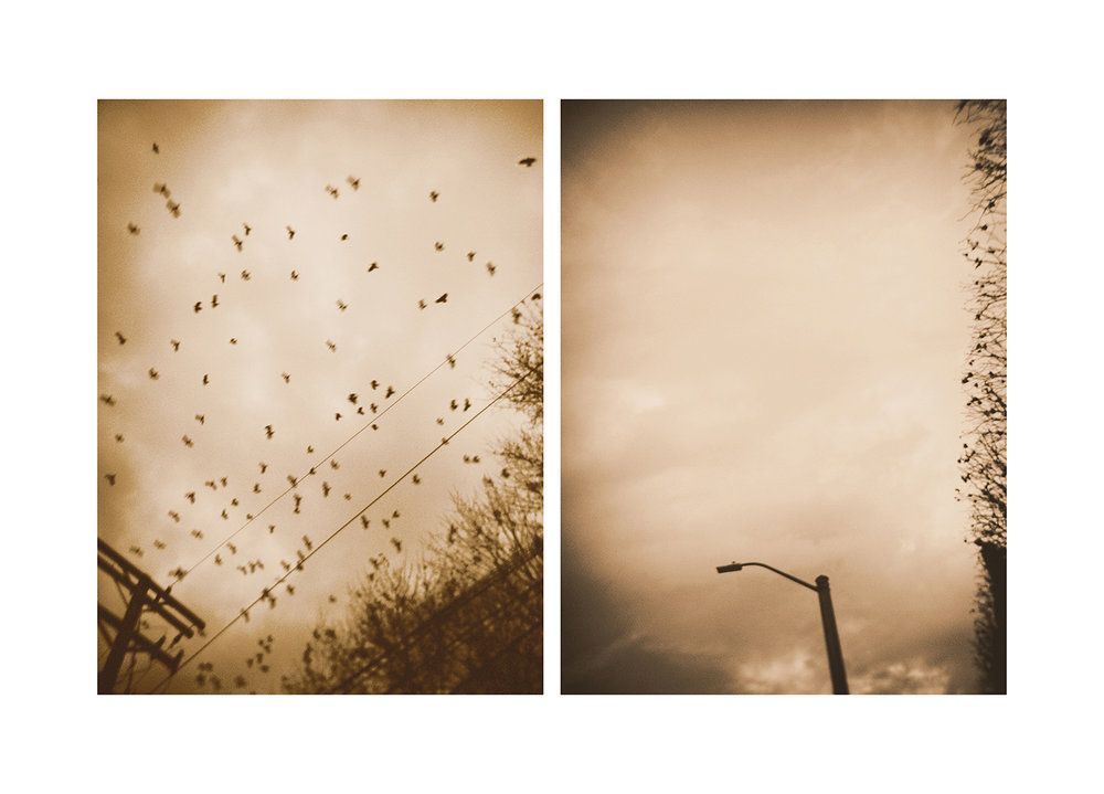 Winter-Vecchi-40.jpg