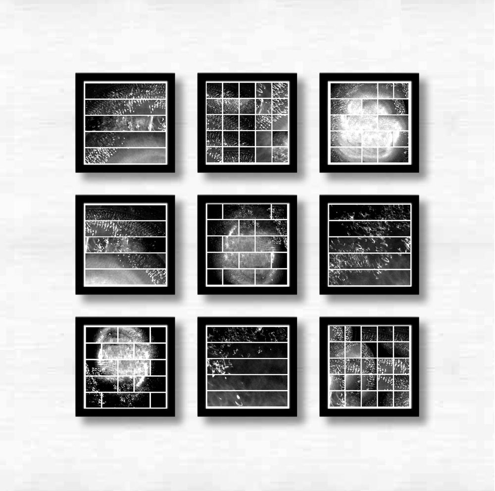Bowl vibe   - 2011 - Photography - 30 x 30 cm