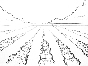 Storyboard sketch of a farmer's field