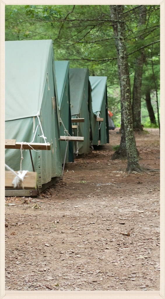 A great job keeping the c& clean and bear-free. & Boy Scout Troop 1916JournalNotes from Summer Camp 2014