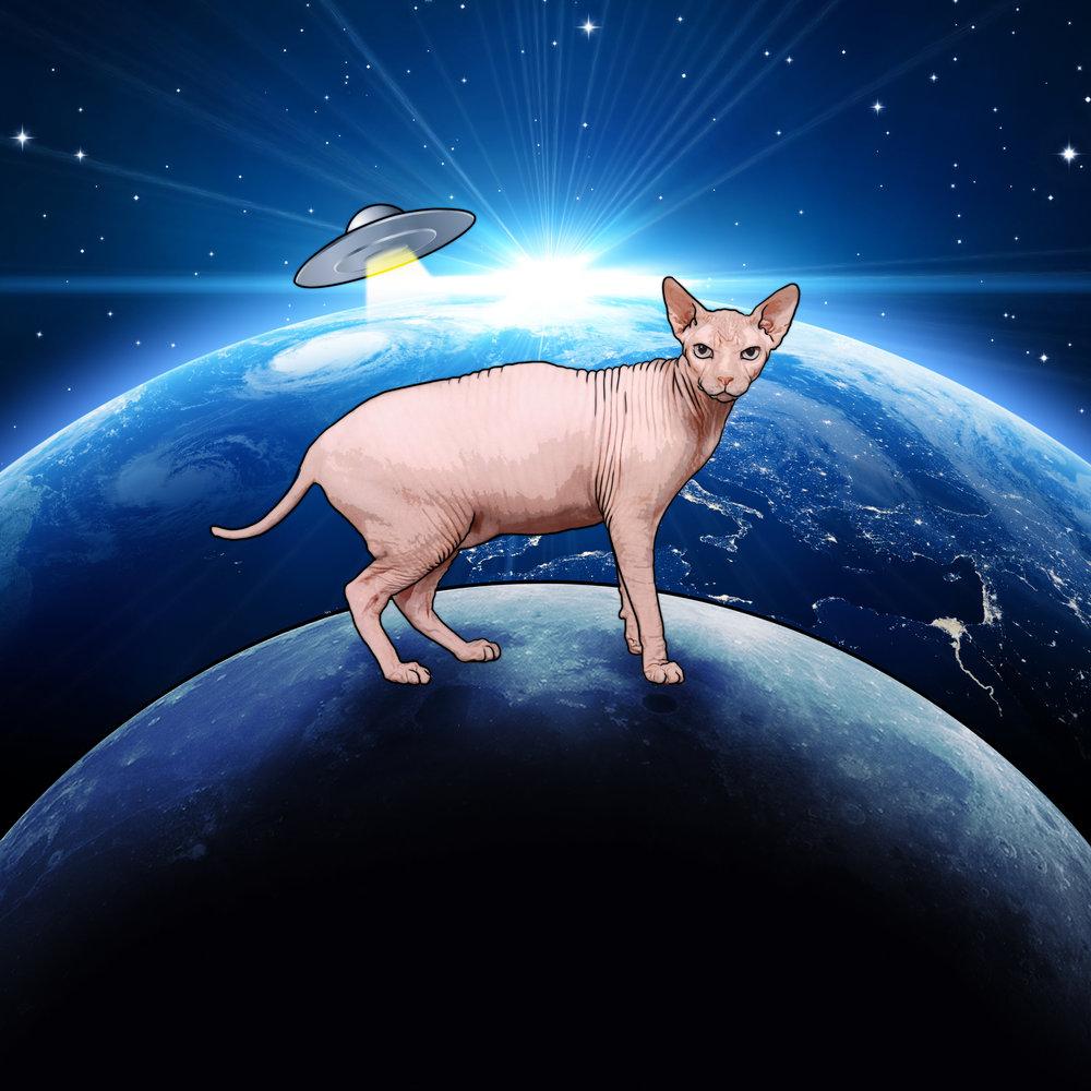 Alien_cat.jpg