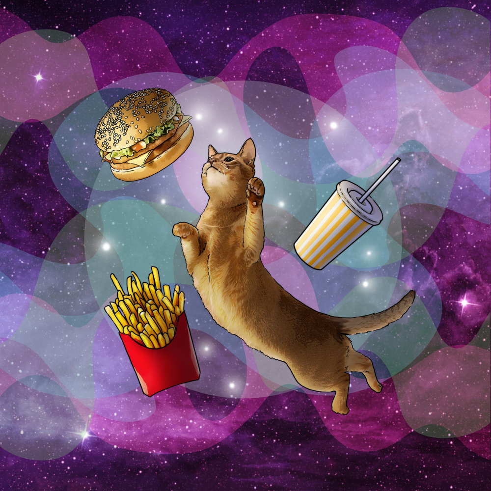 Berger_Cat.jpg