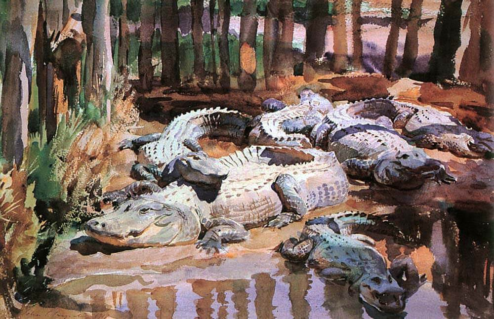 Sargent-Muddy-Alligators