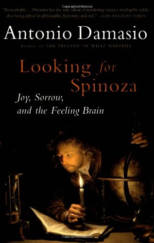 Looking for Spinoza.jpg