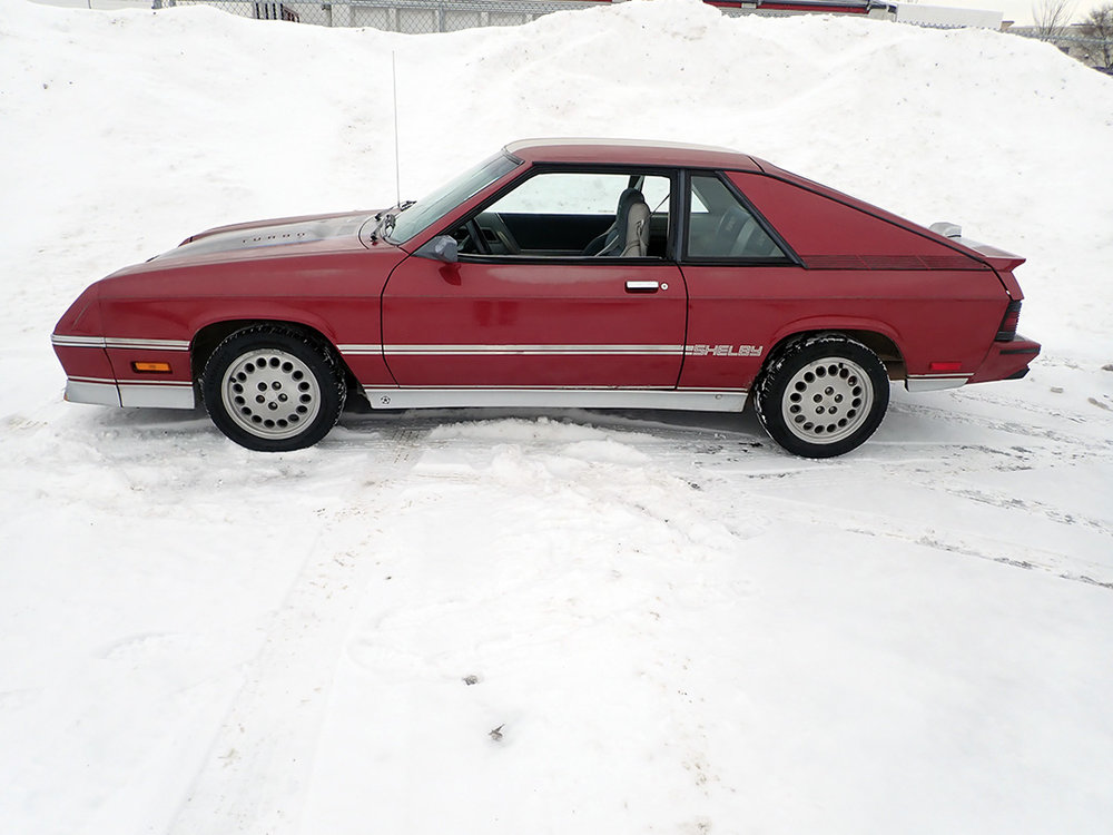 2 1986 Dodge Charger STPC.jpg