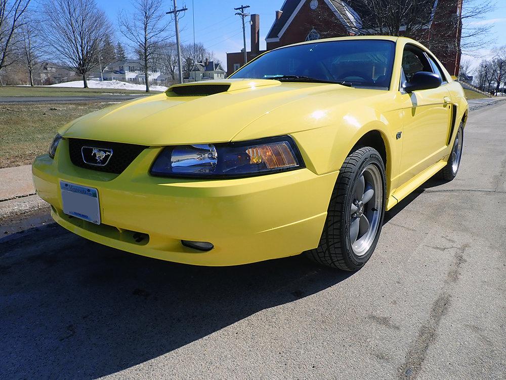 1 2004 Ford Must Hanner.jpg