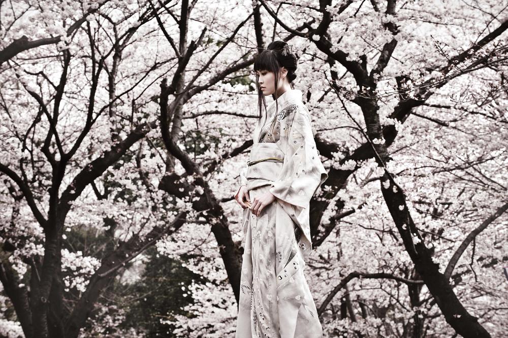 Shirotsuki II , 2008