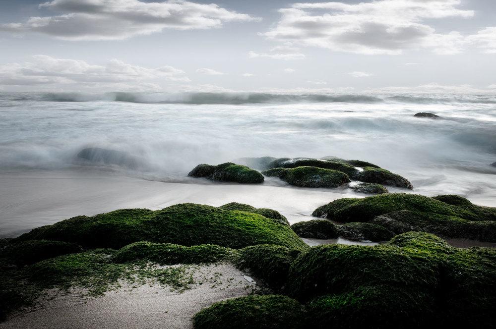 CSP-Landscape-Beach-Dusk.jpg