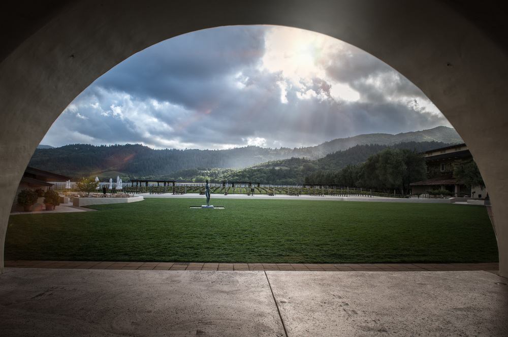 CSP-Landscape-Winery.jpg