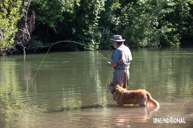 """My friend Kaitlin let me know that she lost both her Dad and his dear Golden, Pearl, this past year. I was honored to have met and photographed Ken and Pearl in the summer of 2014 at their special fishing spot. Pearl passed away on Dec. 15th, 2018 -- her 16th birthday. She remained to the end """"perfect Pearl."""". Ken and  Pearl had been so devoted to each other. Kaitlin's dad's death five months earlier was unexpected, even though he had a heart condition. Thankfully, he was able to be active until the end, and had recently returned from a fishing trip when his heart gave out. Pearl was a Canine Companions for Independence breeder dog. Ken and his wife were giddy with excitement the day they brought Pearl home and became her caretakers.  She had been chosen to be a breeder because of her easy-going temperment; even among Golden Retrievers, she was exceptional in her gentleness and good nature. They have dubbed her """"Perfect Pearl,"""" and except for a fondness for shredding paper (she couldn't be left with the morning newspaper for too long), she was! Her puppy raiser confided that if Pearl had a theme song, it would be """"Love the One You're With."""" After 14 years with Ken and the family, and 45 beautiful puppies, """"Give Me All Your Lovin"""" became her new theme song. We wish Kaitlin and her mom love and peace and strength. . . .  #ilovemydog #seniordogsrock#seniordogsrule #oldsouls #olddogs #doglovers #bestdog #doglove#projectunconditional #unconditionallove #iloveyousomuch #dogswelove #goldenretriever #goldenretrieverworld #goldenretrieverlove #caninecompanionsforindependence"""