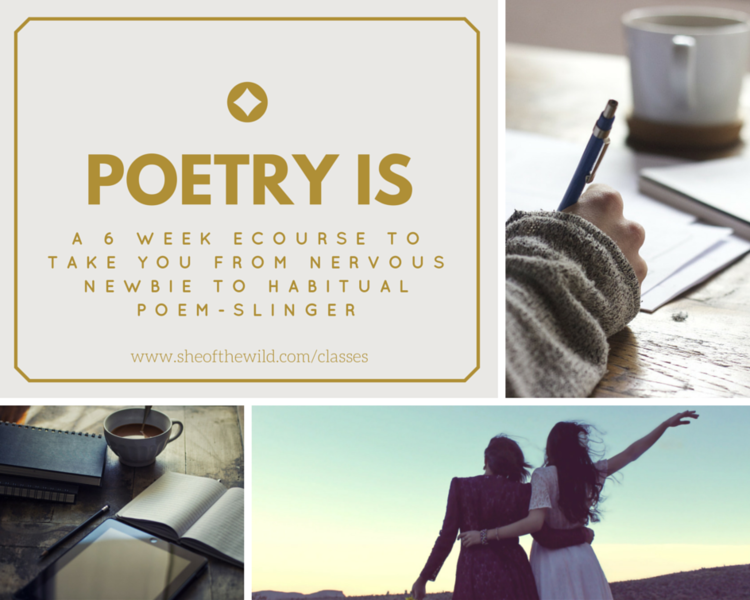 """Poetry has a way of distilling deep truth, offering us startling insight in one or two lines that zing straight to the soul. Pure magic."" -Amanda Fall, interview (affiliate link)"