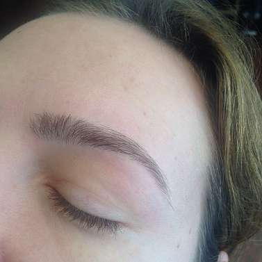 client-brows-6.PNG