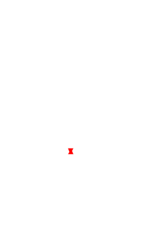 BWC Customs