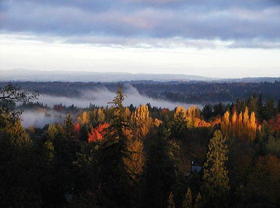 Enchanted Portland
