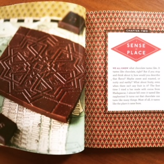 Bean to Bar Chocolate, America's Craft Chocolate Revolution by Megan Giller.