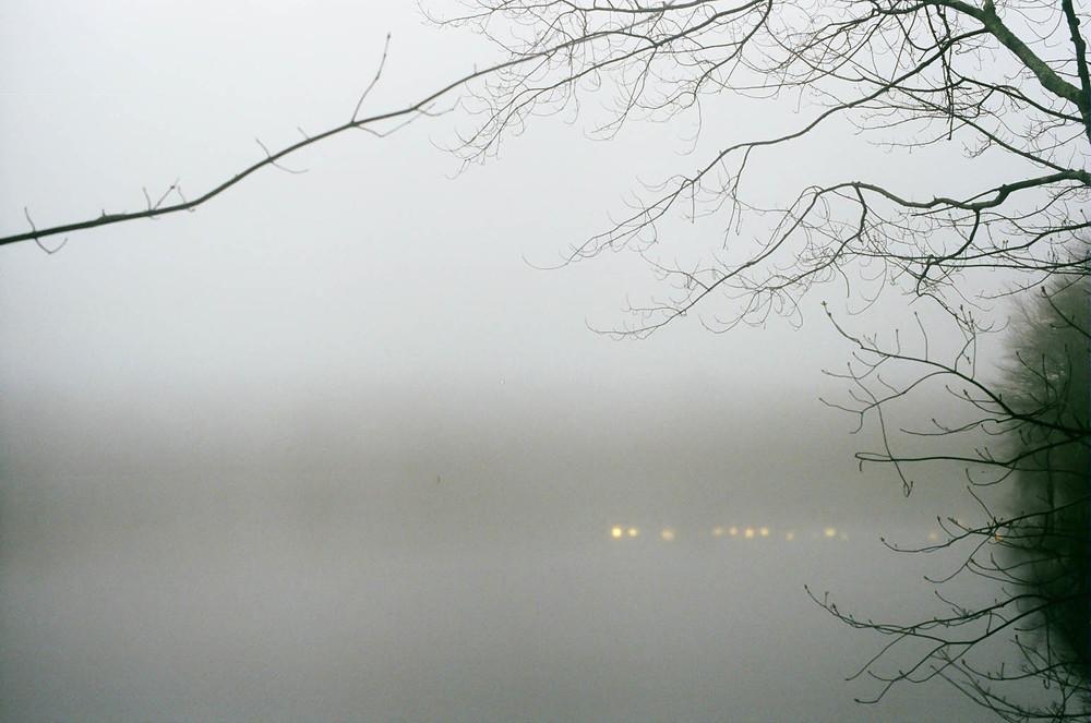 Pond Fog II