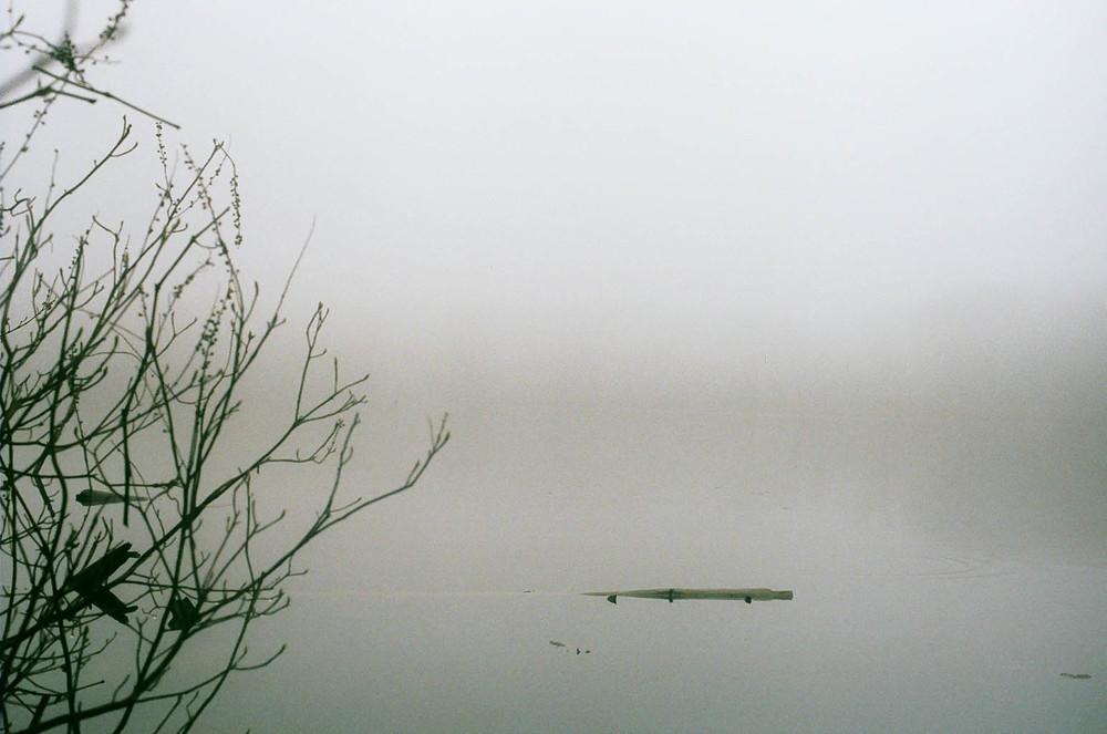 Pond Fog I