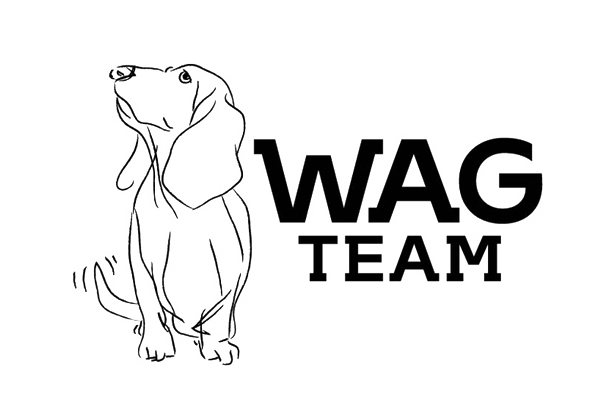 Wagteam FIX.png