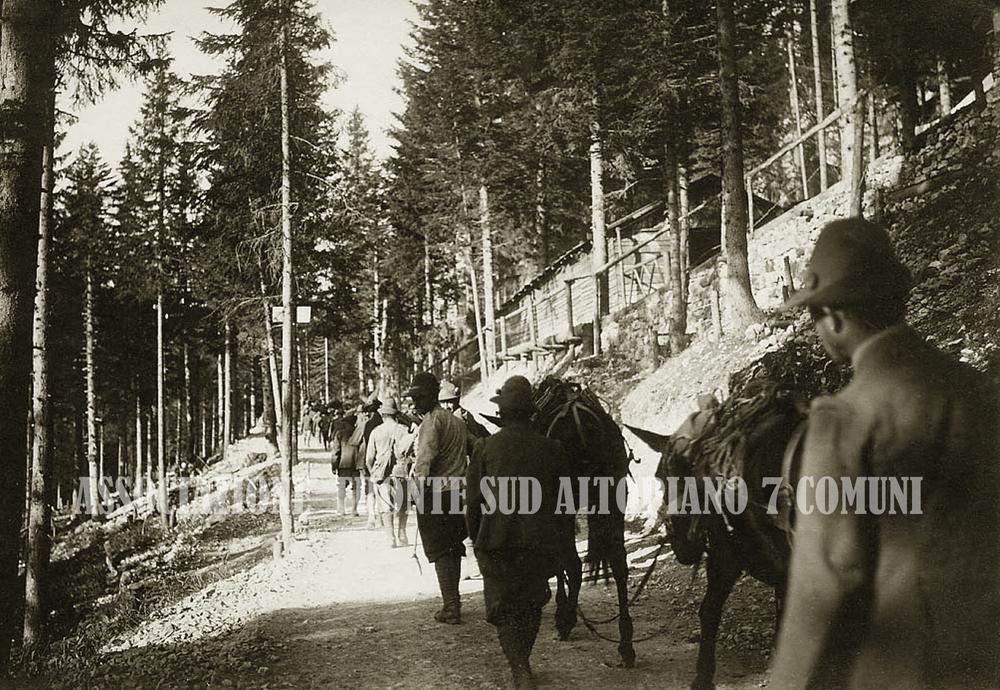 28 - Salmerie alpine sui boschi di Marcesina.jpg