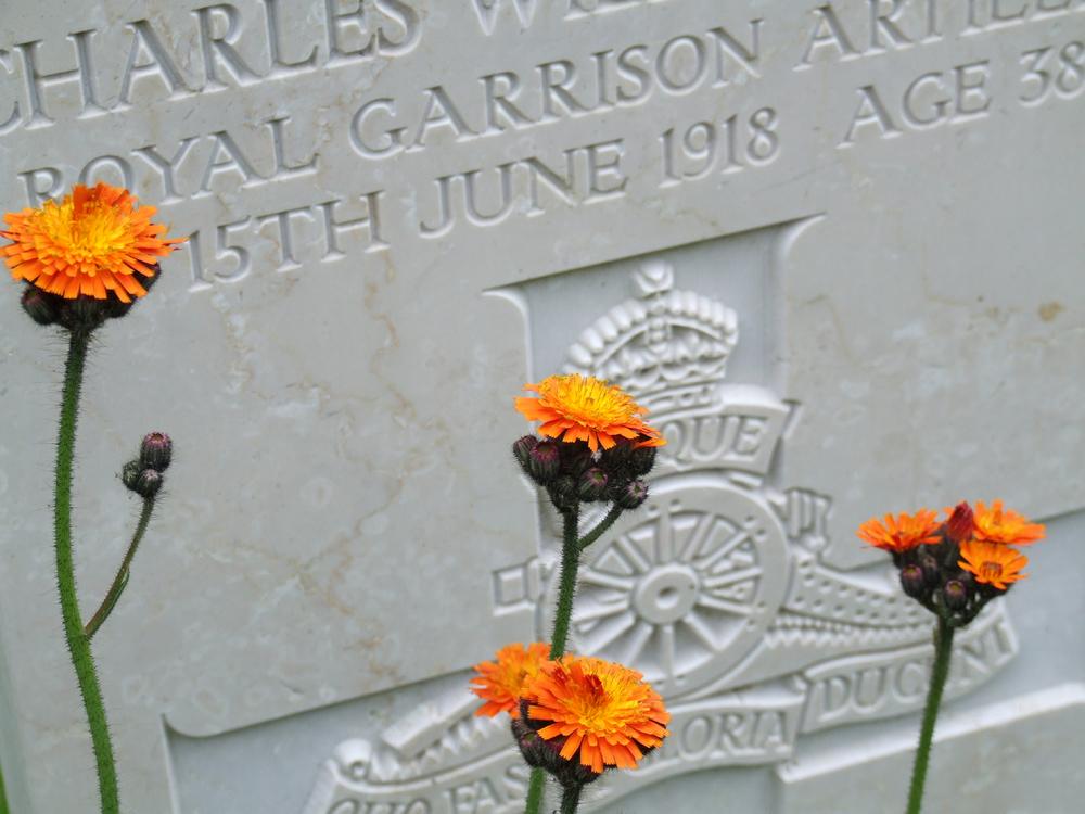 Una fotografia di Ruggero Dal Molin in memoria dei caduti Britannici in Altopiano