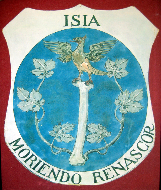 Moriendo renascor  ('In dying I am reborn').  Bone, vine, and phoenix represent the palingeneses of the vegetable and animal kingdoms from their mineral foundation. For Schwaller, the human femur—the largest bone in the body—was the repository of the fixed alchemical salt, the immortal mineral remains that neither fire nor putrefaction can destroy, 'the last in corruption and the first in generation' (Steeb). The incorruptible ashes or salts were regarded by Schwaller as the passive register that preserved an entity's acquired consciousness, and the agent of all mutations between kingdoms and species. Photograph, A. Cheak, Èze-sure-mer, 2005.