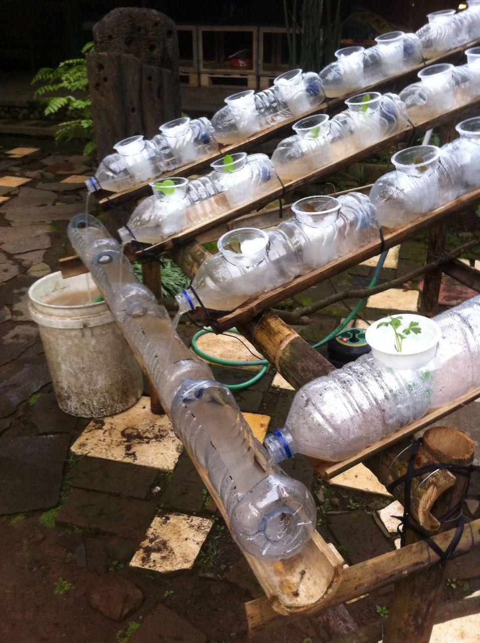 Hydroponic Gardening System