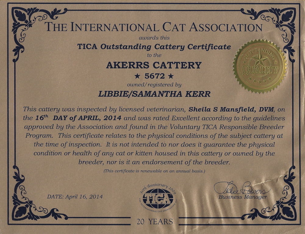 We stand behind our kittens and our lines. - A-Kerr's was the longest running TICA Outstanding Cattery until the end of the program in 2016. We pride ourselves on third party recognition of our dedication to the breed and our cats.