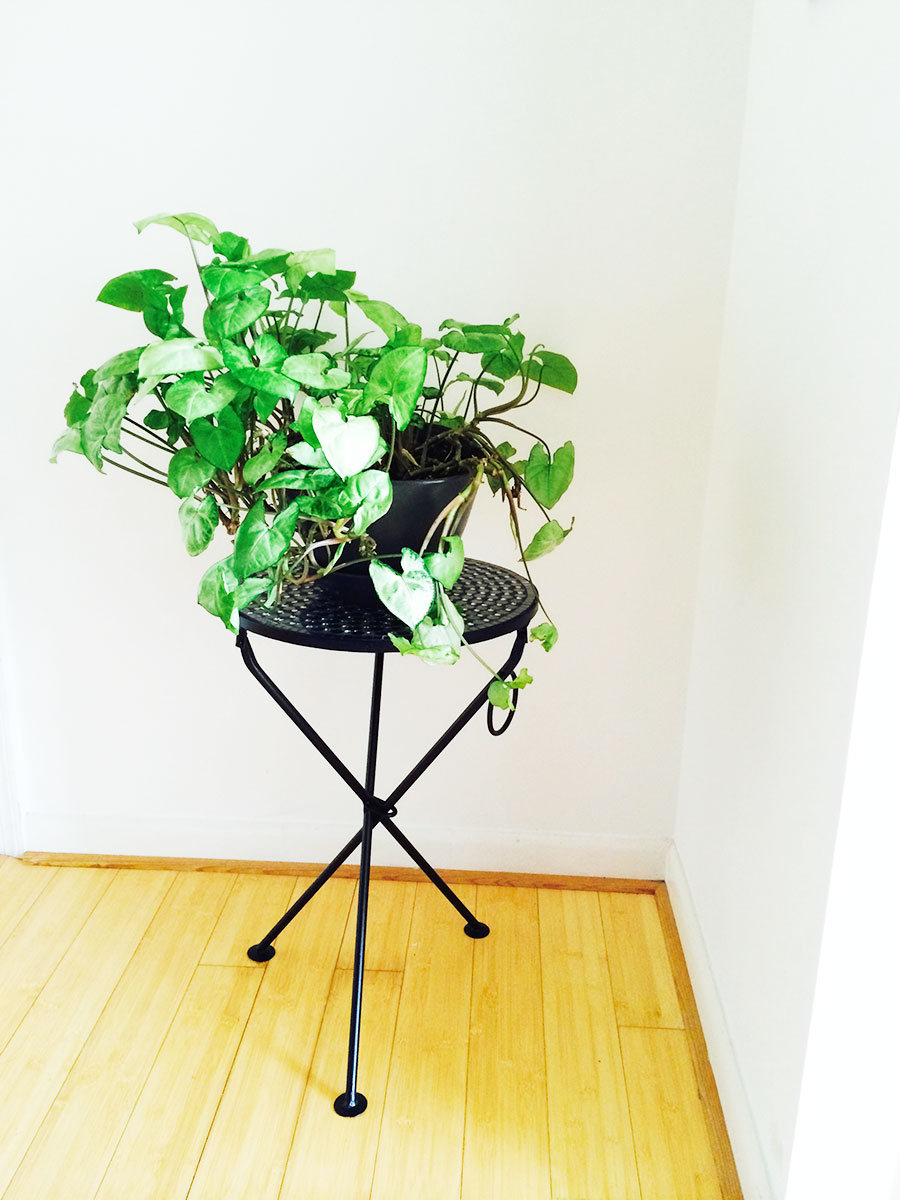 IKEA planter. French table