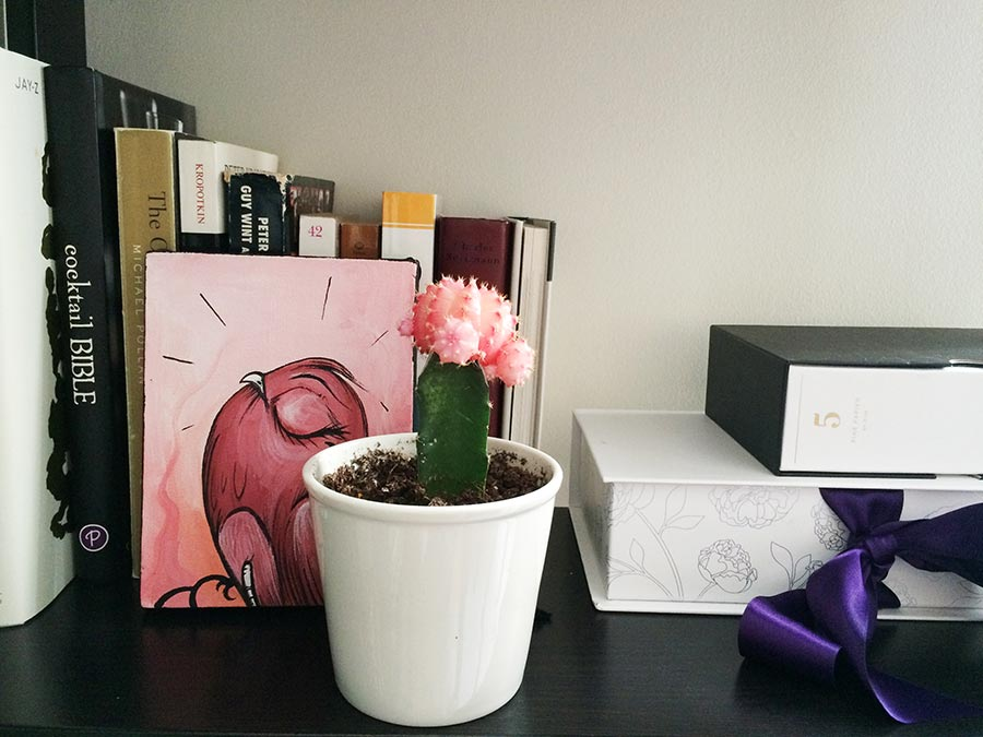 pink-cactus-book-shelf-home-office-inspiration