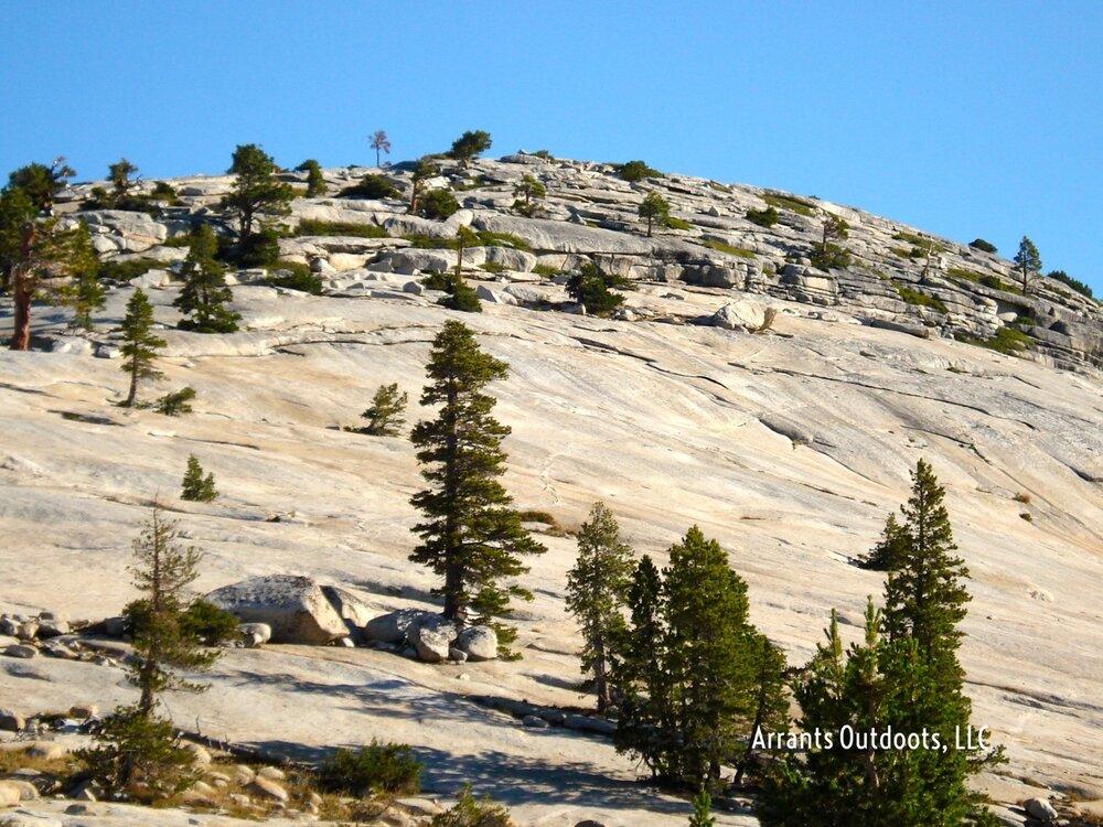 Sierra-Nevada Range