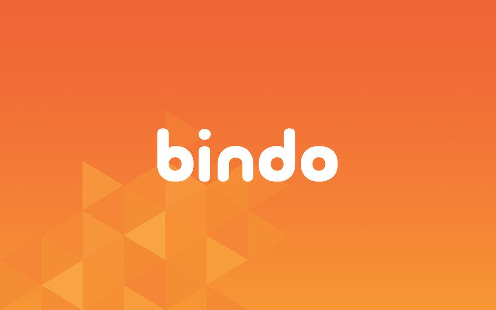 Bindo+Deck_portfolio.001.jpg
