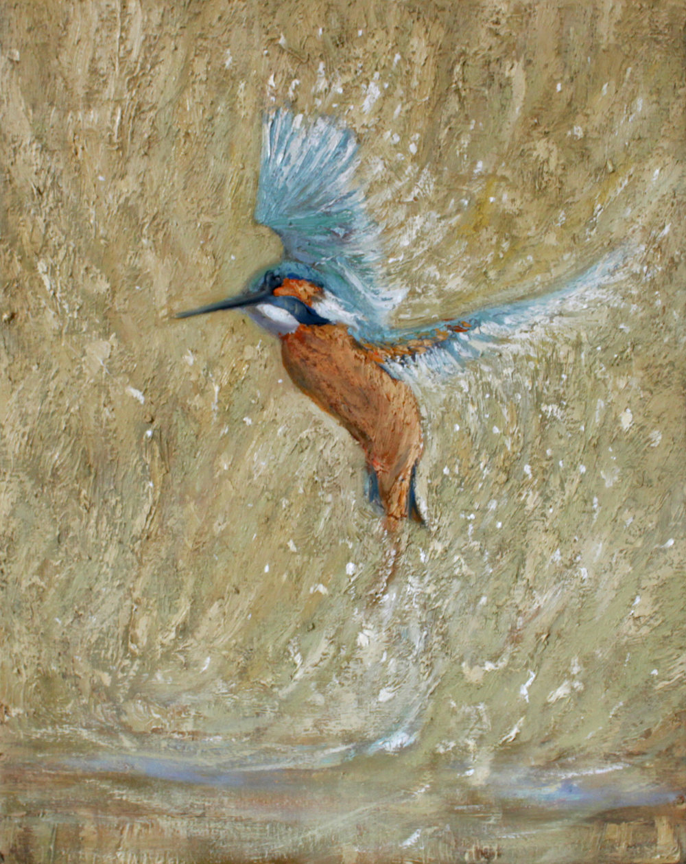 GUIDO SALIMBENI, Kingfisher With Spread Wings