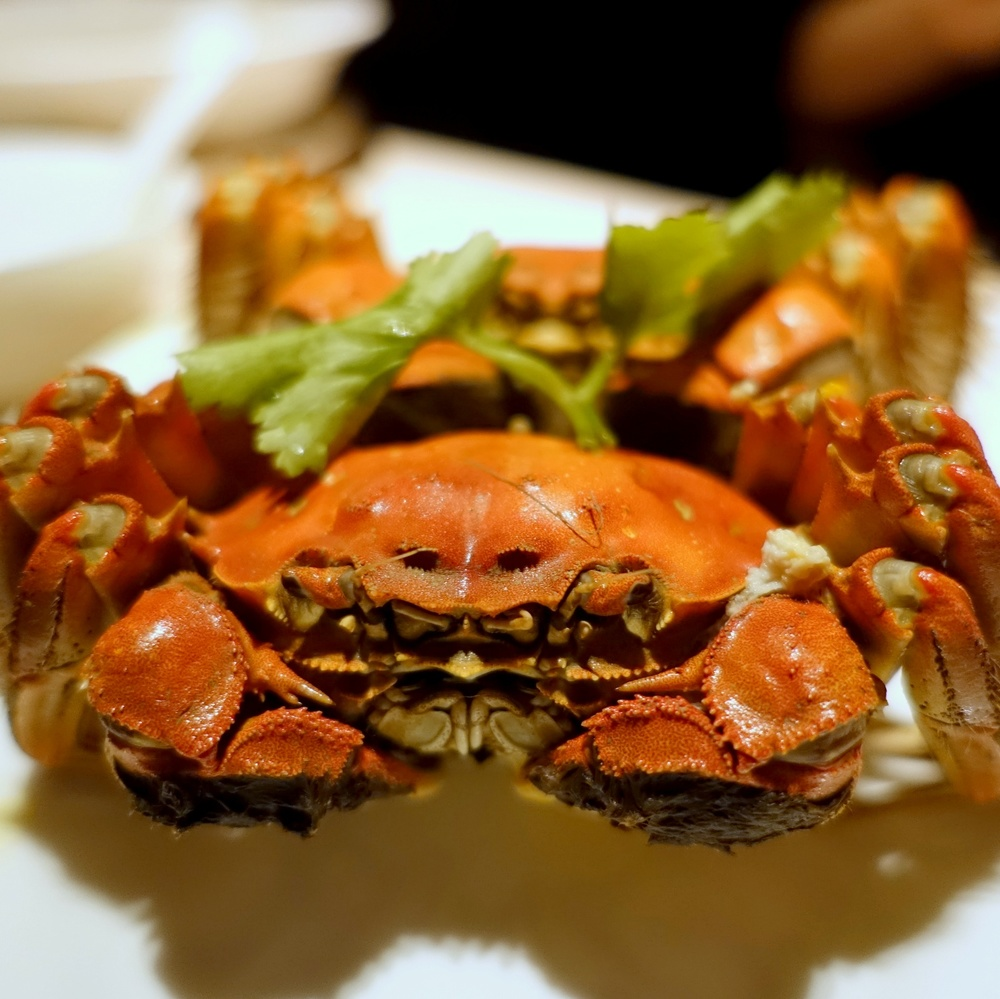 Beautiful Hairy Crabs are brought in from the famous Yang Cheng Lake