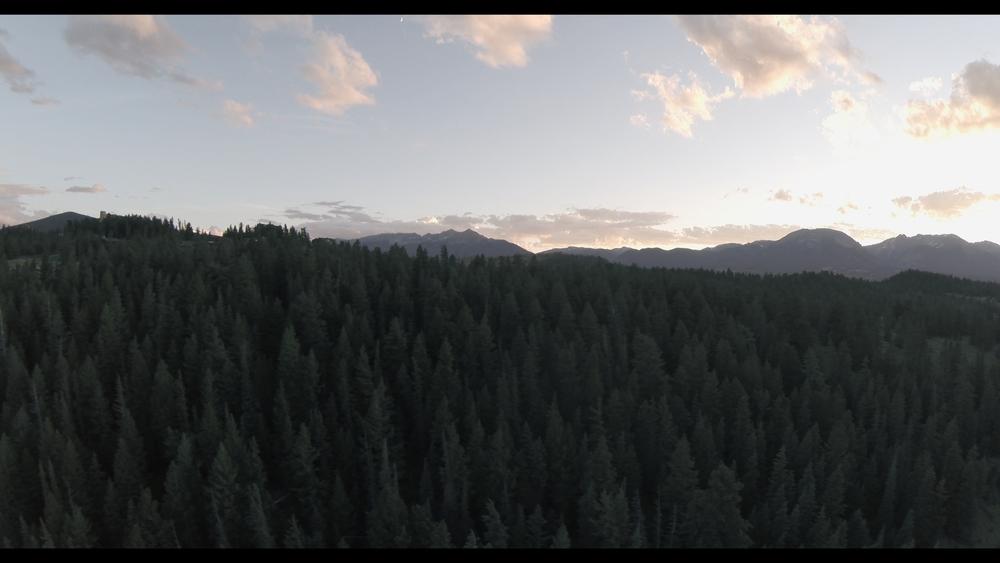 DroneCLR_1.25.1.jpg