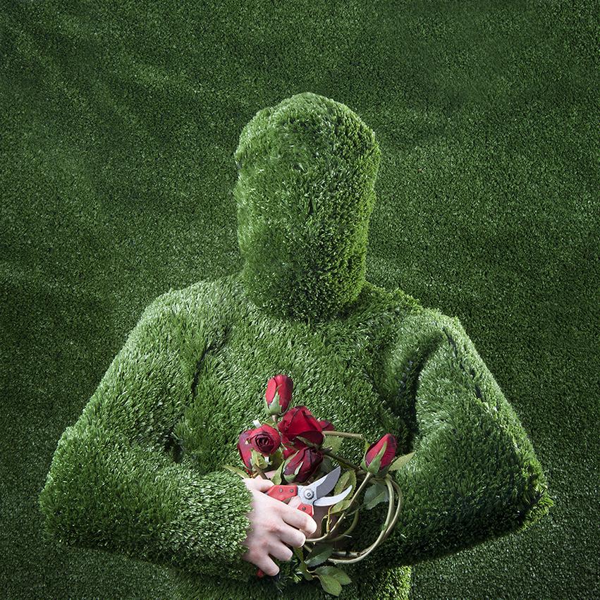 Gerwyn Davies | Grass