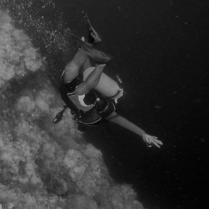 Plunging into the Great Blue Hole, September 2016