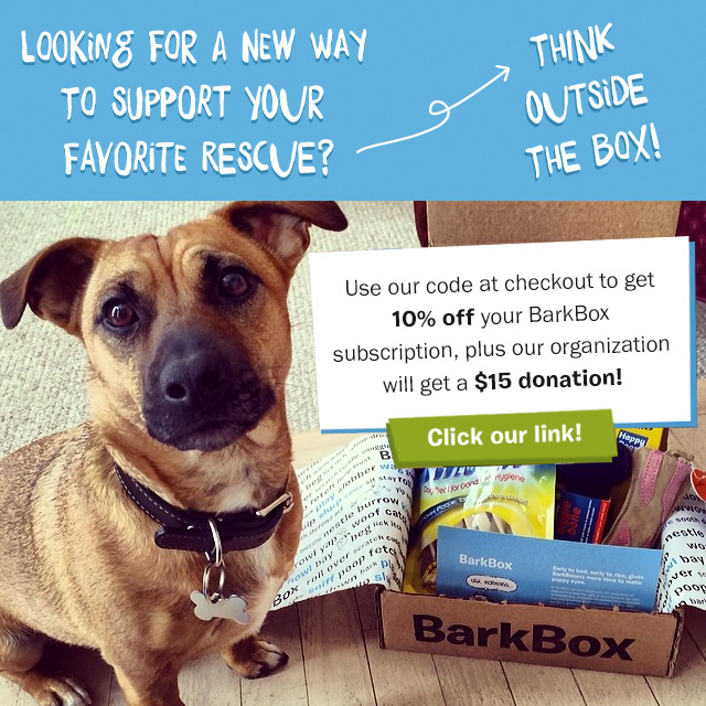 BarkBoxImage.jpg
